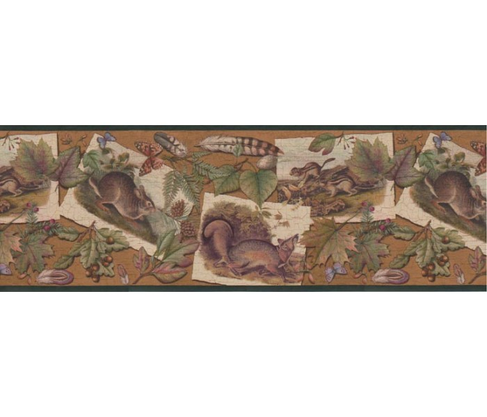 Clearance: Animals Wallpaper Border B33637