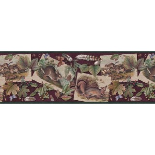 10 1/4 in x 15 ft Prepasted Wallpaper Borders - Contemporary Wall Paper BorderB33638