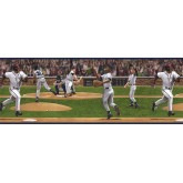 Baseball Wallpaper Borders: Sports Wallpaper Border TW38055B