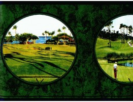 Golf wallpaper Border SC4162B