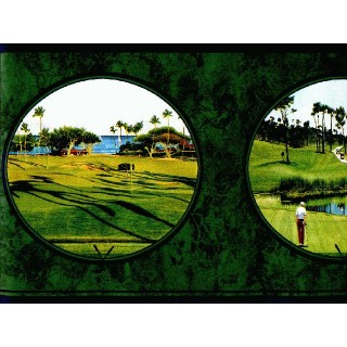 6 3/4 in x 15 ft Prepasted Wallpaper Borders - Golf Wall Paper Border SC4162B
