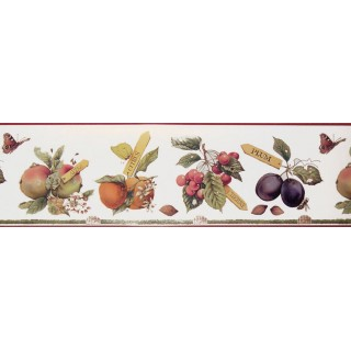 6 3/4 in x 15 ft Prepasted Wallpaper Borders - Fruits Wall Paper Border MB4183B