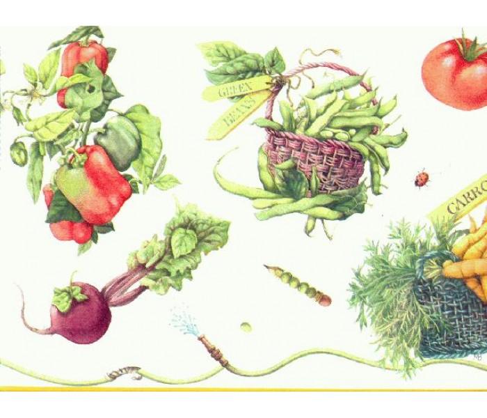 Kitchen Wallpaper Borders: Vegetables Wallpaper Border b4281mb