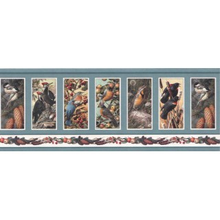 9 in x 15 ft Prepasted Wallpaper Borders - Birds Wall Paper Border SH4331B