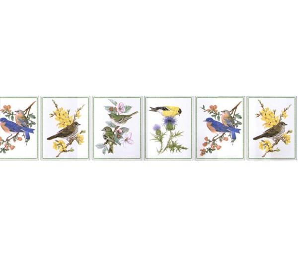 Birds Wallpaper Border NW50012