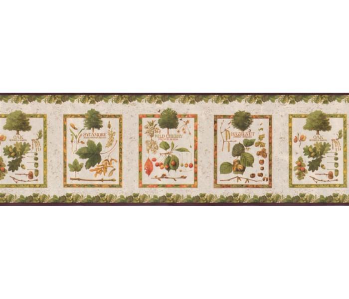 Kitchen Wallpaper Borders: Kitchen Wallpaper Bprder B5062MB