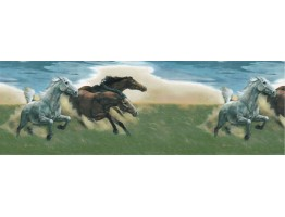 Prepasted Wallpaper Borders - Horses Wall Paper Border B56821