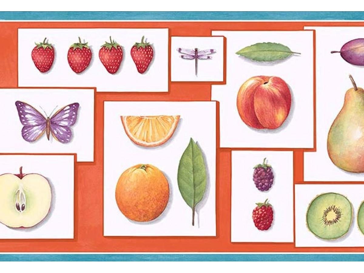 Fruits Wallpaper Border Pb58001b
