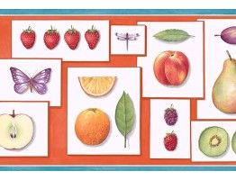Prepasted Wallpaper Borders - Fruits Wall Paper Border PB58001B