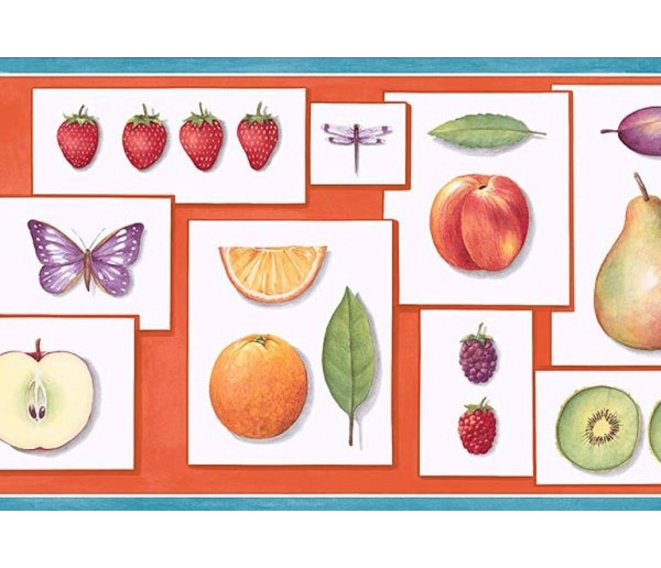 Garden Wallpaper Borders: Fruits Wallpaper Border PB58001B