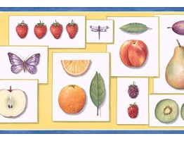 9 in x 15 ft Prepasted Wallpaper Borders - Fruits Wall Paper Border PB58002B