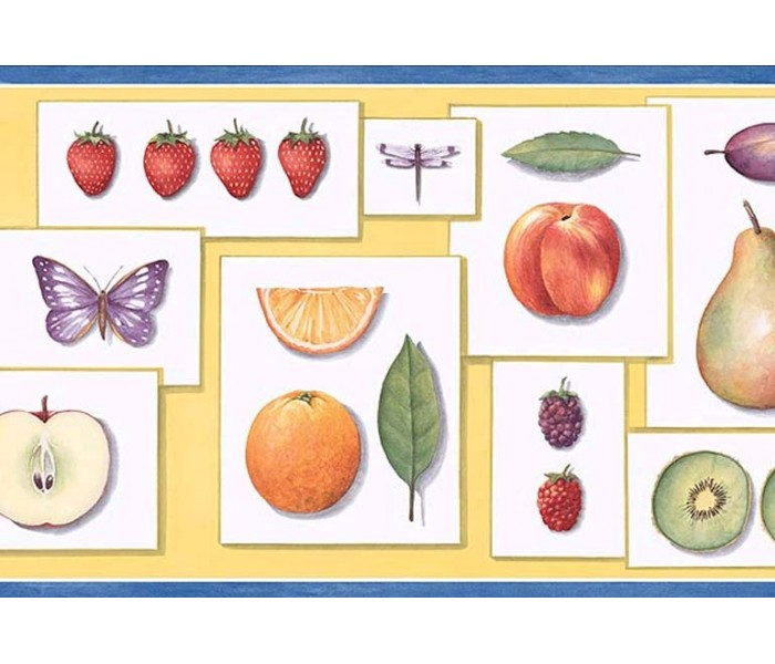 Clearance: Fruits Wallpaper Border PB58002B