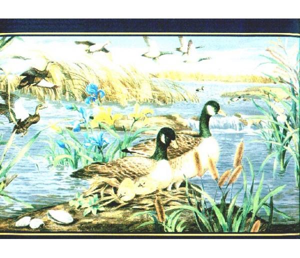 Clearance Birds Wallpaper Border b72072
