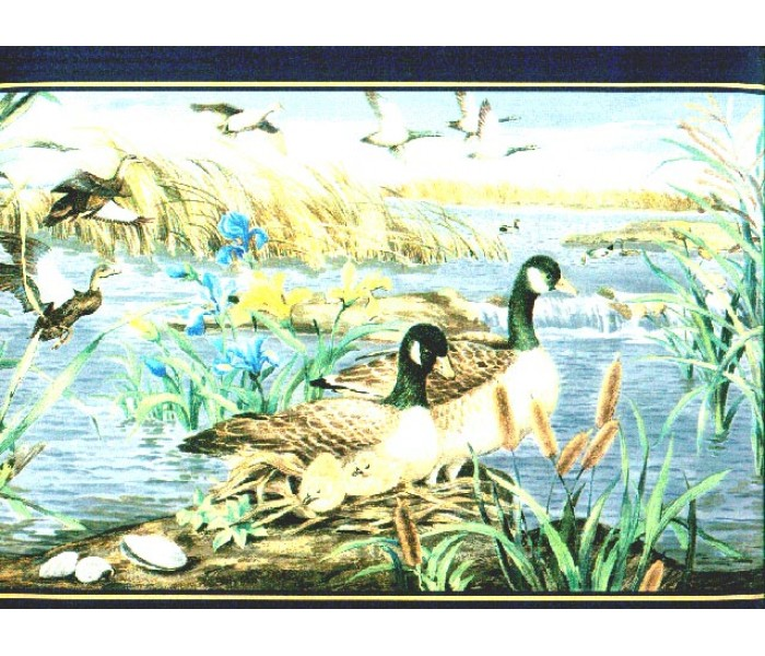 Clearance: Birds Wallpaper Border b72072