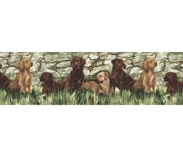 Clearance Dogs Wallpaper Border TM75053 S.A.MAXWELL CO.