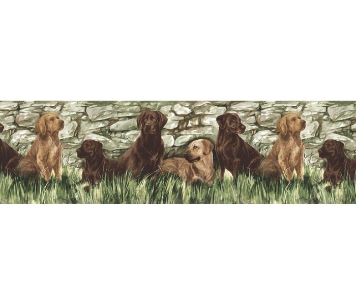 Clearance: Dogs Wallpaper Border TM75053