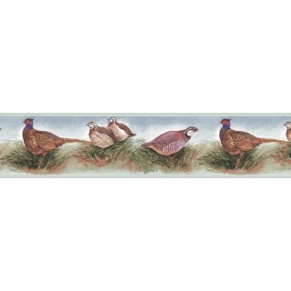 7 in x 15 ft Prepasted Wallpaper Borders - Birds Wall Paper Border B75079