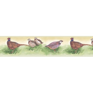 7 in x 15 ft Prepasted Wallpaper Borders - Birds Wall Paper Border b75080