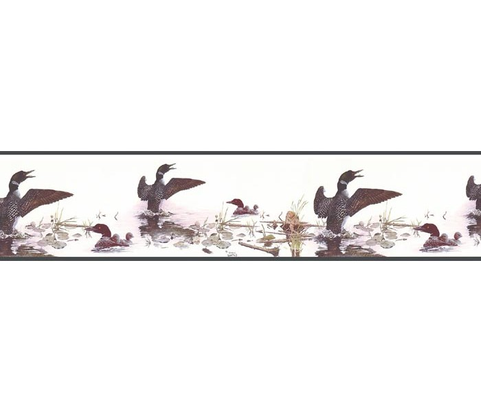 Clearance: Birds Wallpaper Border B76345