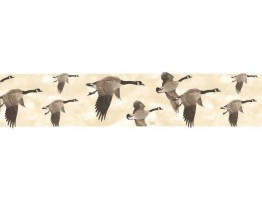 7 in x 15 ft Prepasted Wallpaper Borders - Birds Wall Paper Border B76373