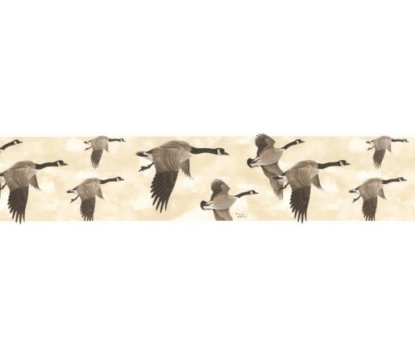 Clearance: Birds Wallpaper Border B76373