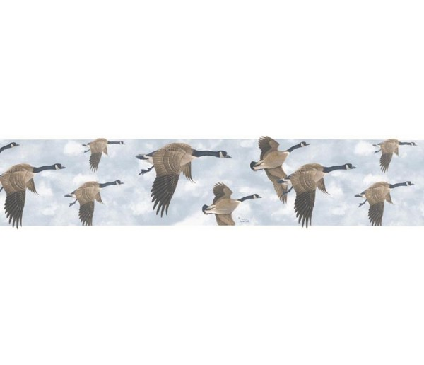 Birds  Wallpaper Borders: Birds Wallpaper Border B76374