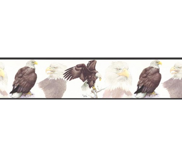 Birds  Wallpaper Borders: Eagle Wallapaper Border GL76379