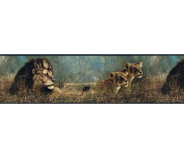 Jungle Animals Wallpaper Border B76462