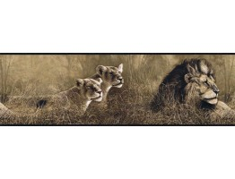 Prepasted Wallpaper Borders - Animals Wall Paper Border B76463