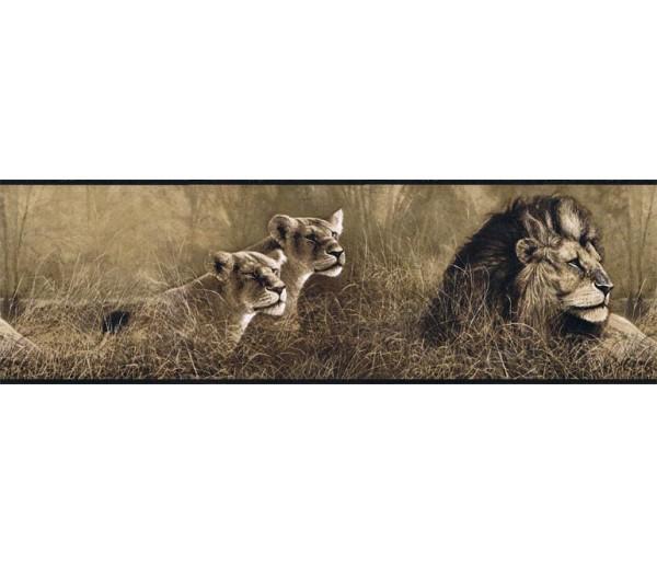 Jungle Wallpaper Borders: Animals Wallpaper Border B76463