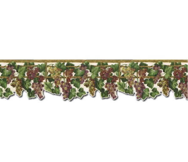 Clearance: Grape Fruits Wallpaper Border WD76836DC
