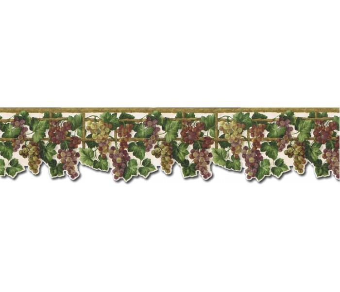 Clearance: Grape Fruits Wallpaper Border WD76836DC