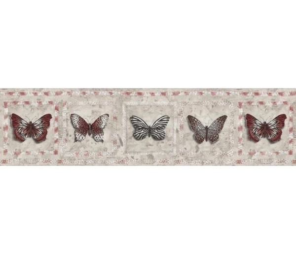 Birds Butterfly Wallpaper Border AW77382 S.A.MAXWELL CO.