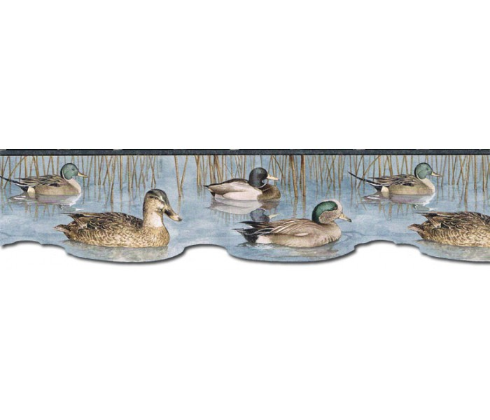 Animal Wallpaper Borders: Ducks Wallpaper Border CJ80019DB