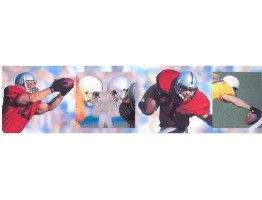 6 in x 15 ft Prepasted Wallpaper Borders - Sports Wall Paper Border SN71144F
