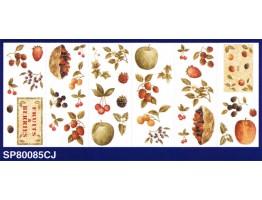 Fruits and Berries Wallpaper Border SP80085CJ
