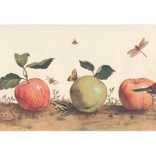 9 in x 15 ft Prepasted Wallpaper Borders - Beige Insects And Apple Wall Paper Border