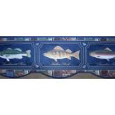 Fishing Blue Framed Fish Photos Wallpaper Border York Wallcoverings