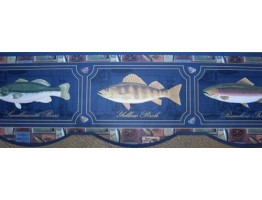 Blue Framed Fish Photos Wallpaper Border