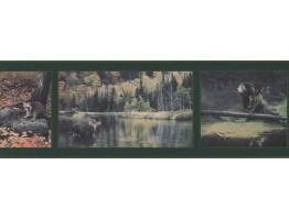 Prepasted Wallpaper Borders - Dark Green Framed Animal Photos Wall Paper Border