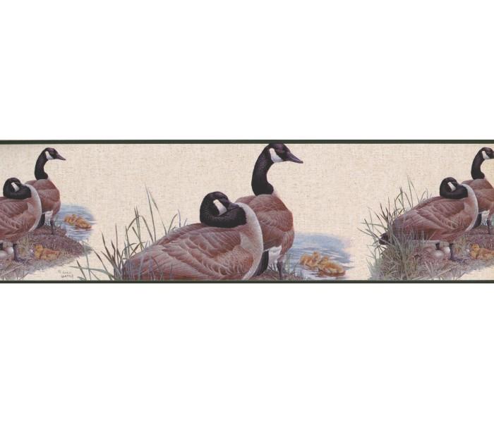 Birds  Wallpaper Borders: GOOSE Family Wallpaper Border