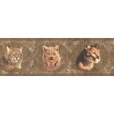 Jungle Wallpaper Borders: Brown Wild Cats Wallpaper Border