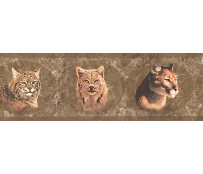 Jungle Wallpaper Borders: Brown Wild Cats Wallpaper Border