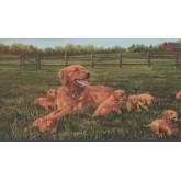 Dogs Wallpaper Borders: Green Labrador Wallpaper Border