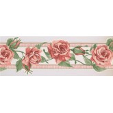 Floral Wallpaper Borders: Orange Rose Green Leaf Wallpaper Border