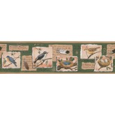 Birds Beige Green Bird Nest Wallpaper Border York Wallcoverings