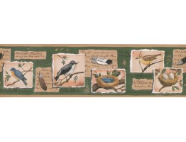 Prepasted Wallpaper Borders - Beige Green Bird Nest Wall Paper Border