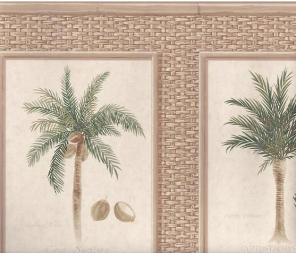 Tropical Brown Bamboo Palm Trees Wallpaper Border
