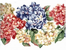 Prepasted Wallpaper Borders - Red Blue Yellow Flowers Wall Paper Border